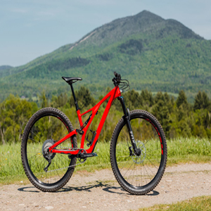 Specialized-Stumpjumper-Review-gear-patrol-slide-1-1940x1300-1