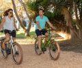 electric_bike_raleigh_retroglide985
