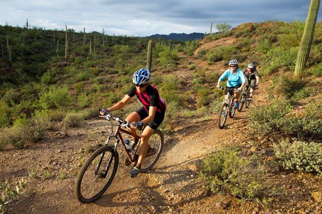 Tucson's Loop River Path